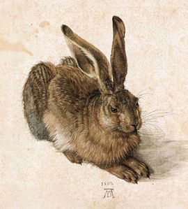 300px-Durer_Young_Hare
